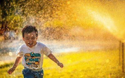 Pompe à eau: Test et recommandations 2020 🌼