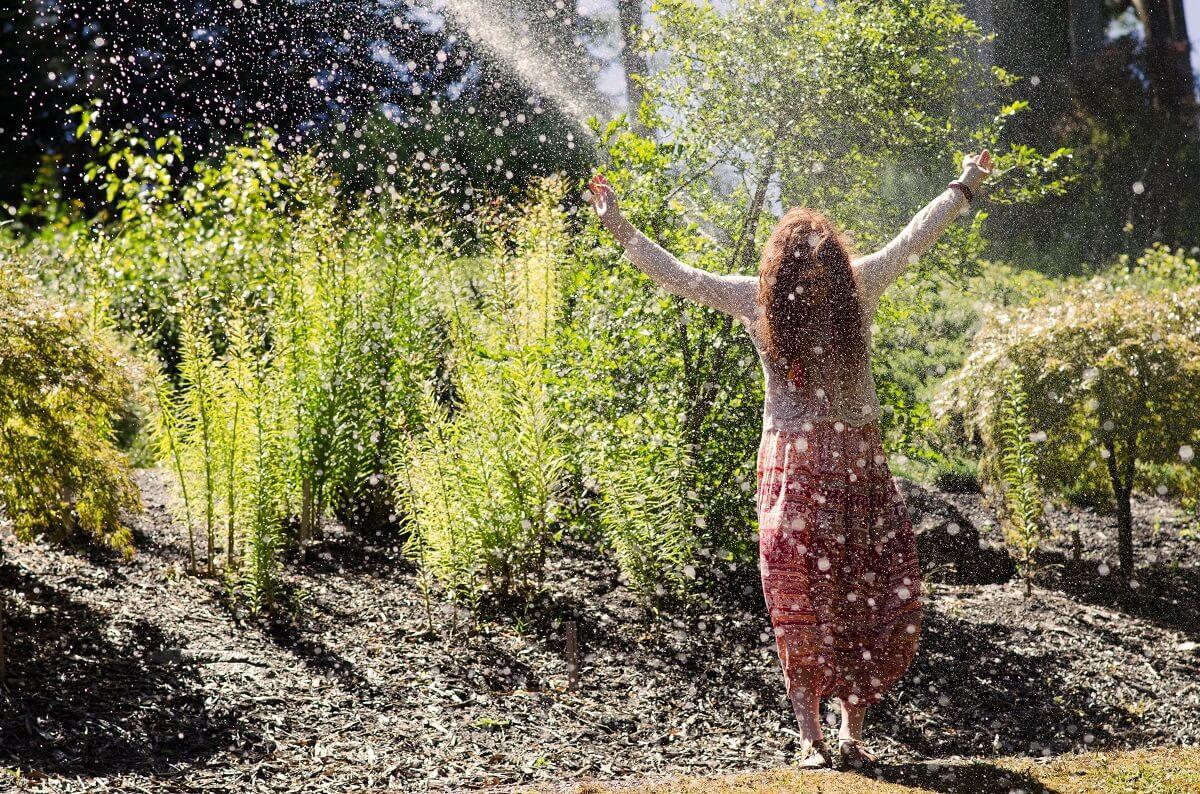 Comment Arroser Mes Plantes Pendant Les Vacances arrosage automatique 2020: test et recommandations