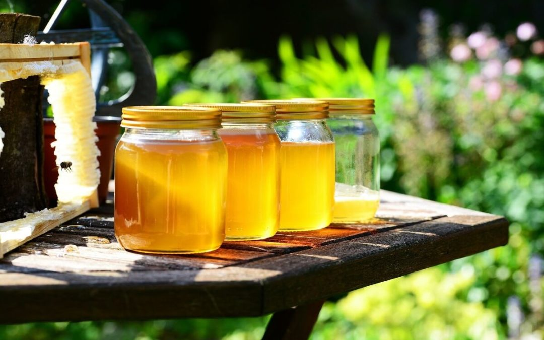 Extracteur de miel : Test et recommandations (03/20)