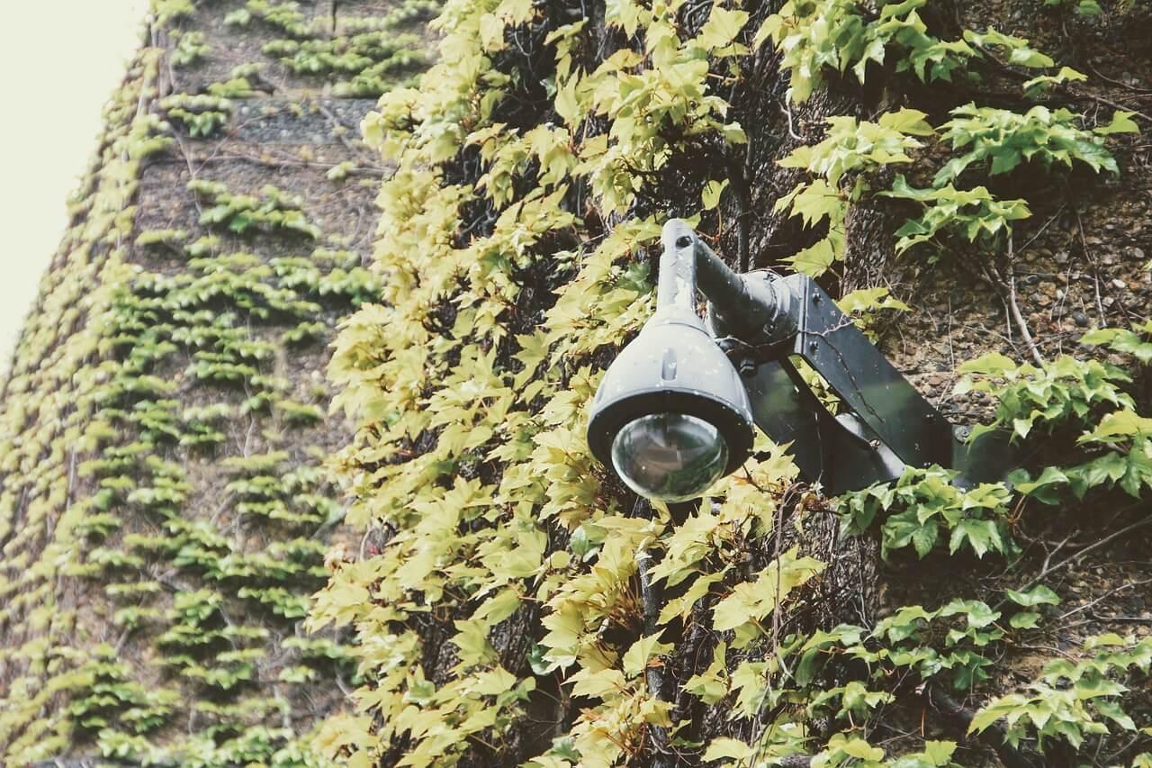 Caméras sans fil contre caméras filaires