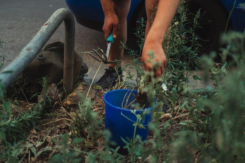 Image d'un sac à outils de jardinage.