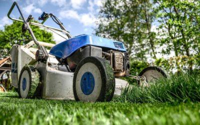 Les outils indispensables pour l'entretien du gazon