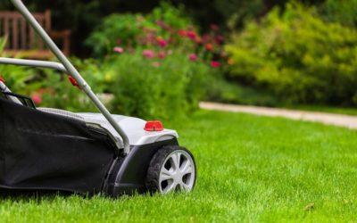Quelles sont les 5 raisons de recourir aux services d'un paysagiste ?