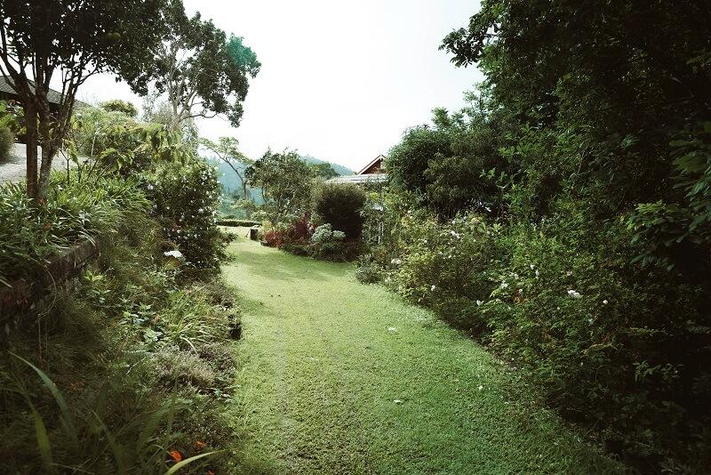jardins bien tondu